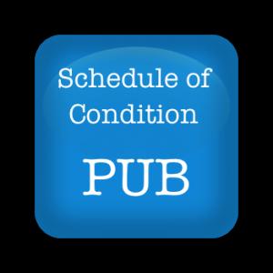 Schedule of condition pub
