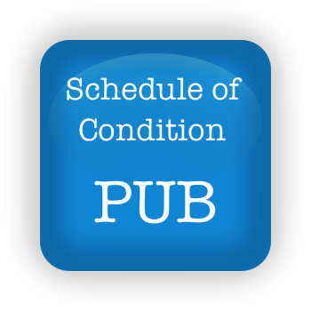 Schedule of condition pub