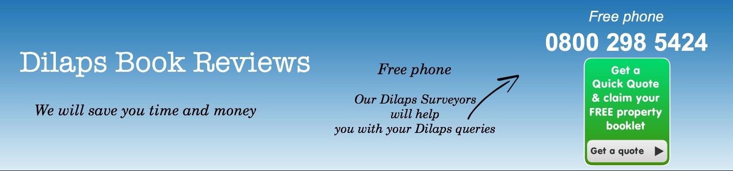 Dilaps book reviews