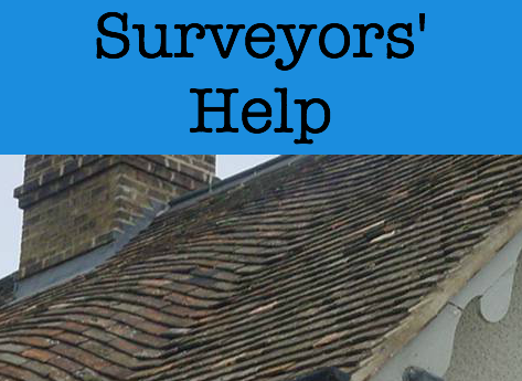surveyors help