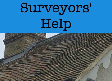 surveyors help