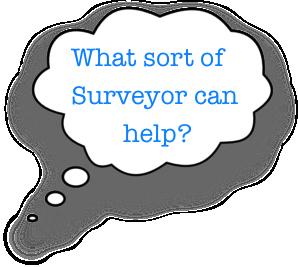 what sort of surveyor