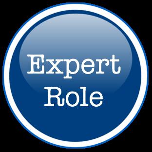 Expert role
